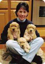 Liz Barrows - Breeder of Daisy-Gold Goldens